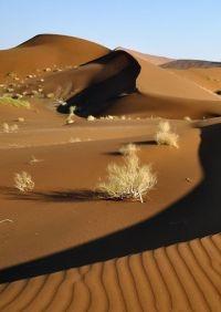 Namibia - The Film