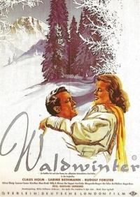 Waldwinter /AN