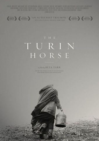 Das Turiner Pferd