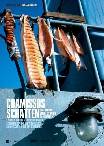 Chamissos Schatten: Kapitel 2 Teil 2 - Tschukotka und die Wrangelinsel
