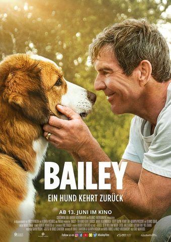 Bailey - Ein Hund kehrt zurück