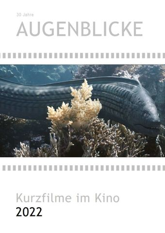 Augenblicke - Kurzfilme im Kino 2020