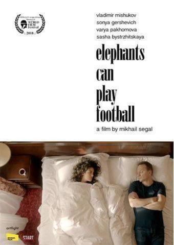 Elefanten können Fußball spielen