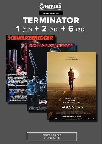 Triple Terminator 1 (2D) + 2 (3D) + 6 (2D)