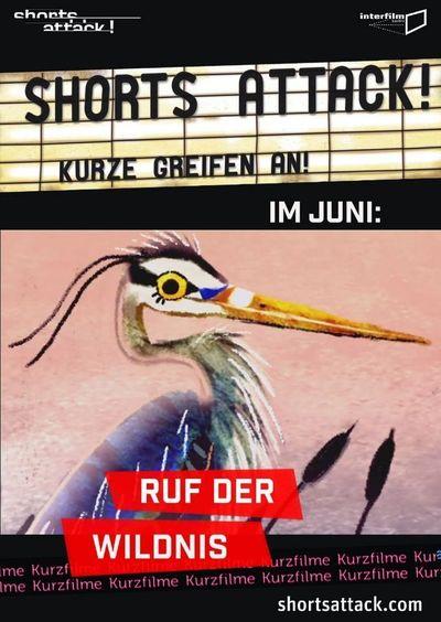 Shorts Attack: Ruf der Wildnis
