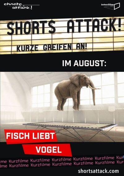 Shorts Attack 2020: Fisch liebt Vogel