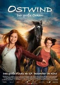 Kino Elmshorn Programm