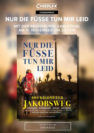 900 km Jakobsweg: NUR DIE FÜSSE TUN MIR LEID