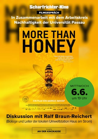 Filmgespräch: More than Honey