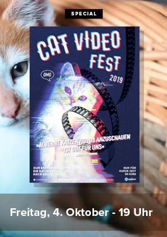 """191004 Special """"CatVideoFest 2018"""""""