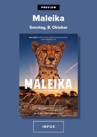 Preview - Maleika