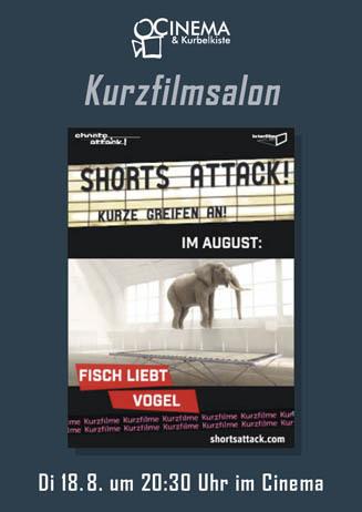 Shorts Attack: Fisch liebt Vogel